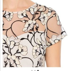 Adrianna Papell Graphic Radiance embroidered